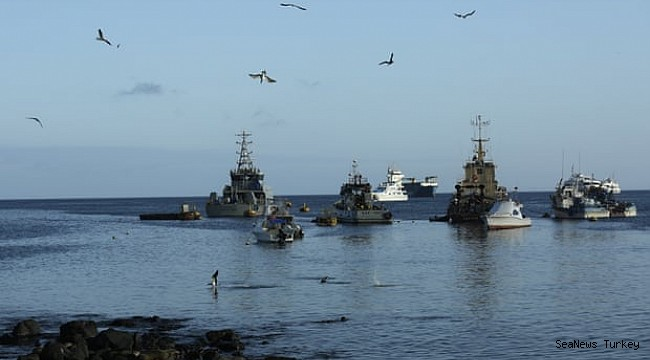 Alarm over discovery of hundreds of Chinese fishing vessels near Galápagos Islands!