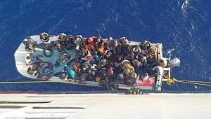 Italy, Malta reject 52 migrants stranded on animal cargo ship!