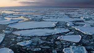 Arctic Sea Ice Loss: World Leaders Must Arrest Arctic Climate Change Impacts!