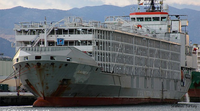 Livestock carrier goes missing with 43 crew onboard!