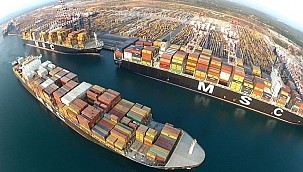 MSC continues boxship buying spree!