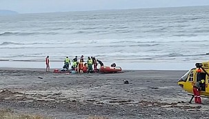 Woman killed in fatal shark attack in New Zealand