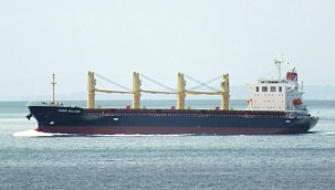 Migrants took control of bulker off south coast of England!