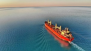 Maritime leads will develop global standards for ammonia!